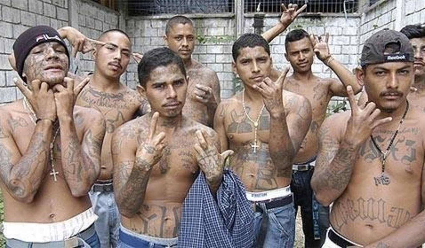 Image result for bandas dominicanas